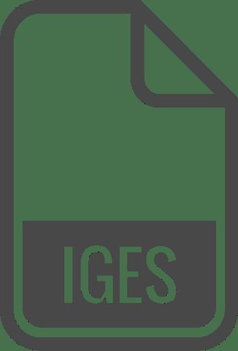 Igs file